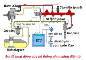 Hệ thống cấp nhiên liệu đóng vai trò cung cấp nhiên liệu cho động cơ hoạt động ở những trạng thái khác nhau
